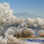 Зима, иней, первый снег