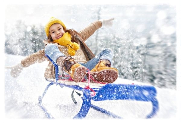 санки зимние виды спорта